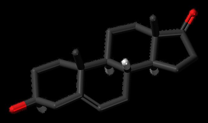 steroid molecule